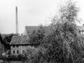 Steinbergstr1966-03-Abriss