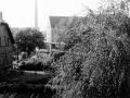 Steinbergstr1966-08-Abriss
