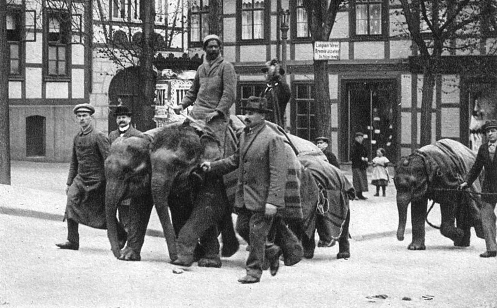 Ruhe1920er-05-Elefantentransport