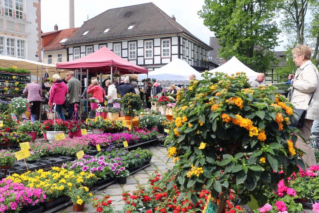 Wochenmarkt2015-05-09-174-FestderMarktleute