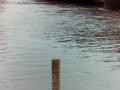 Leinehochwasser1990-03