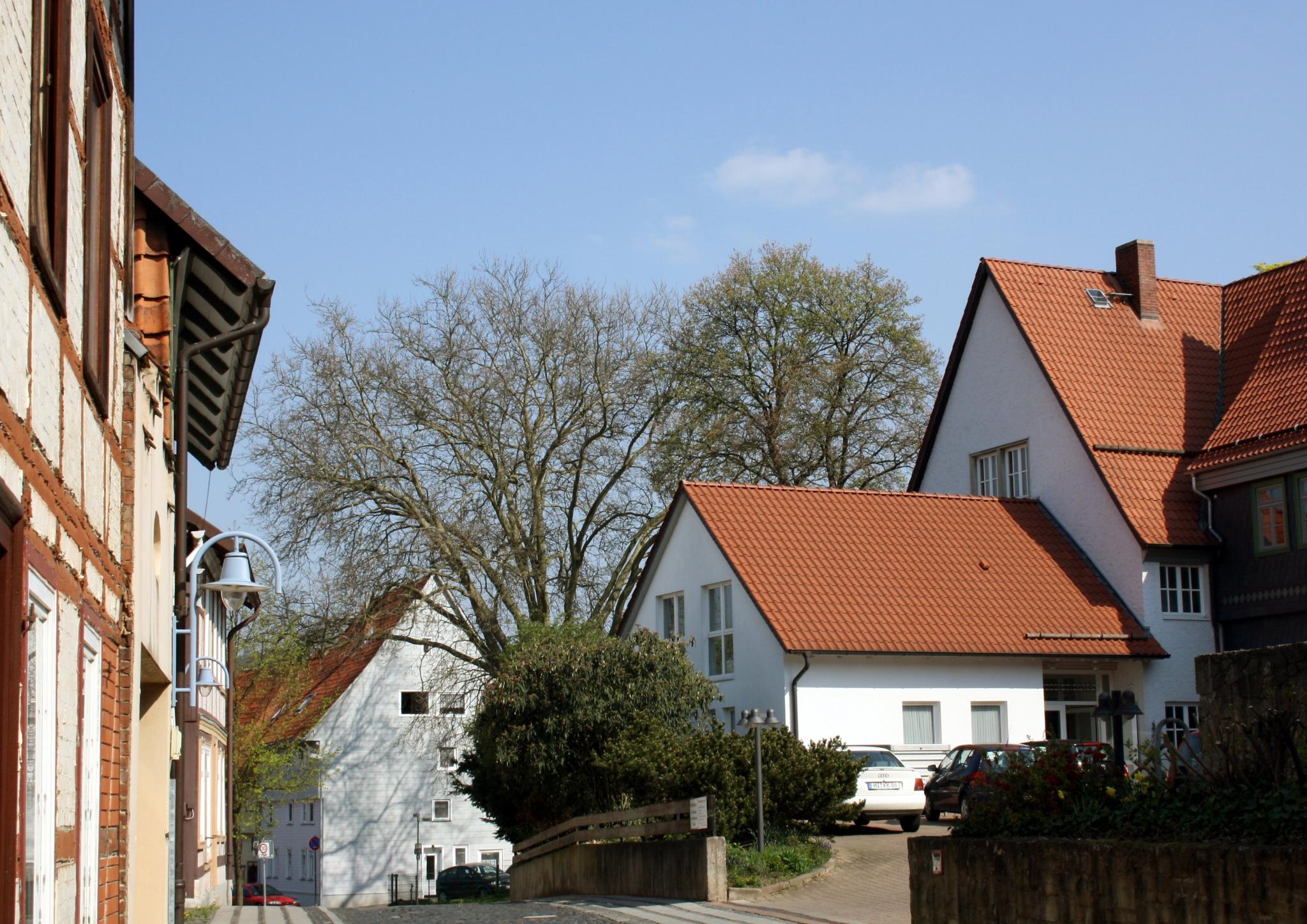 AmMönchehof2011-01