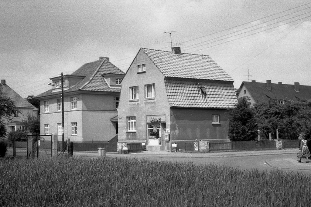 Antonianger1960-01-Weiße-Erde