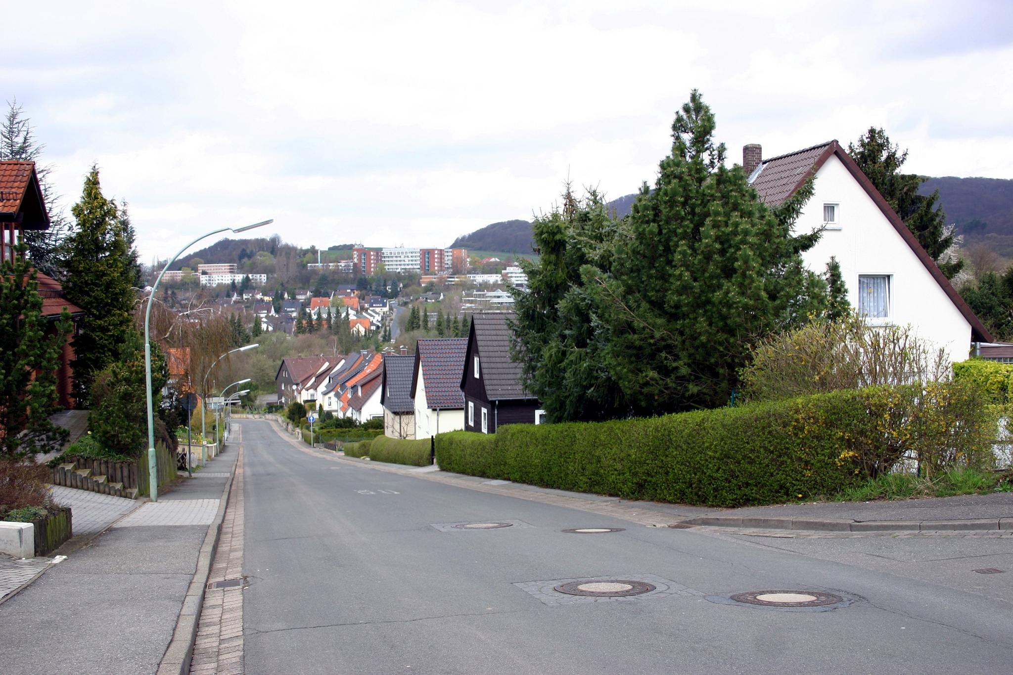 Bergstr2008-01