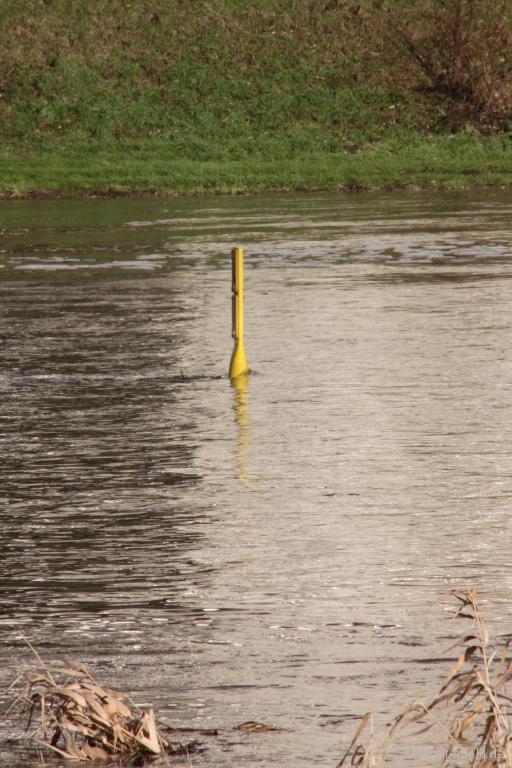 Hochwasser2011-05