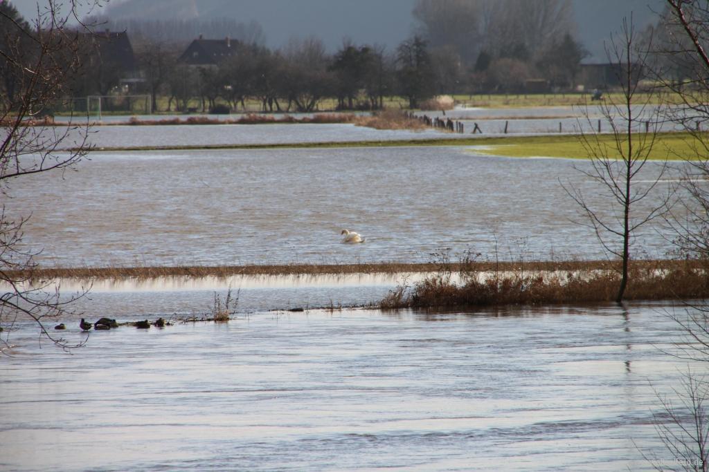 Hochwasser2011-08