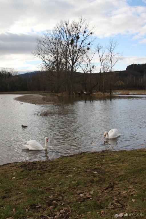 Hochwasser2011-40