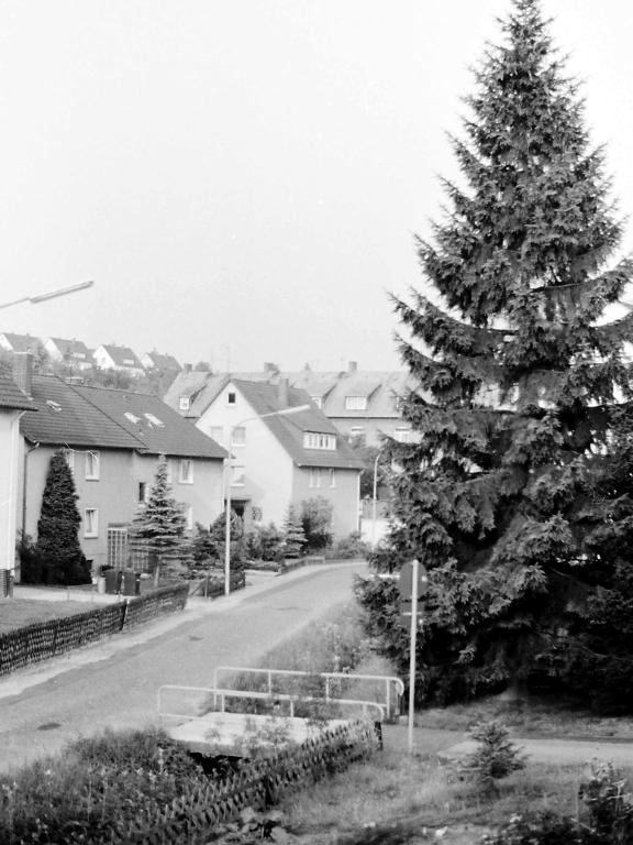 ImWambeck1986-13