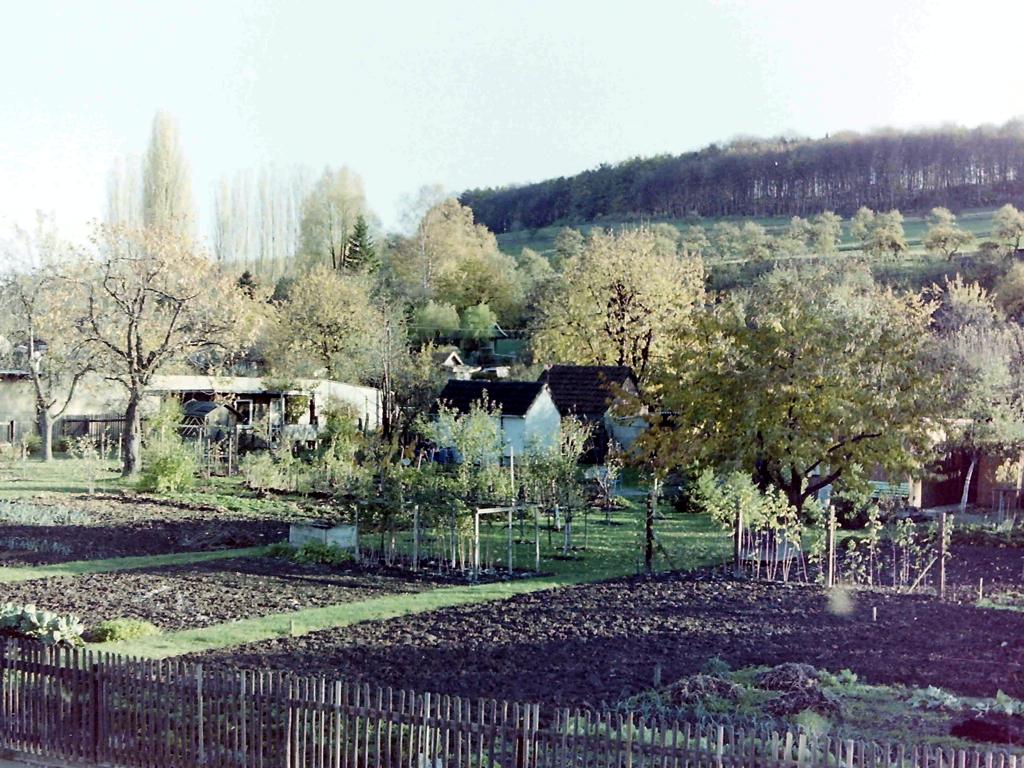 ImWambeck1986-15