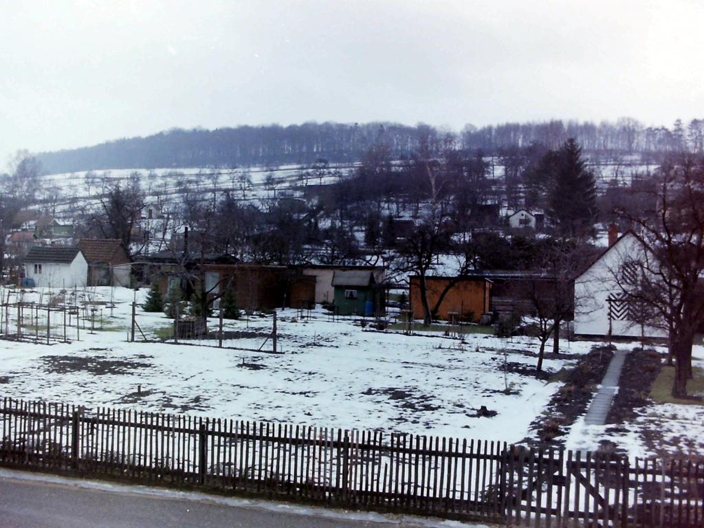 ImWambeck1986-18