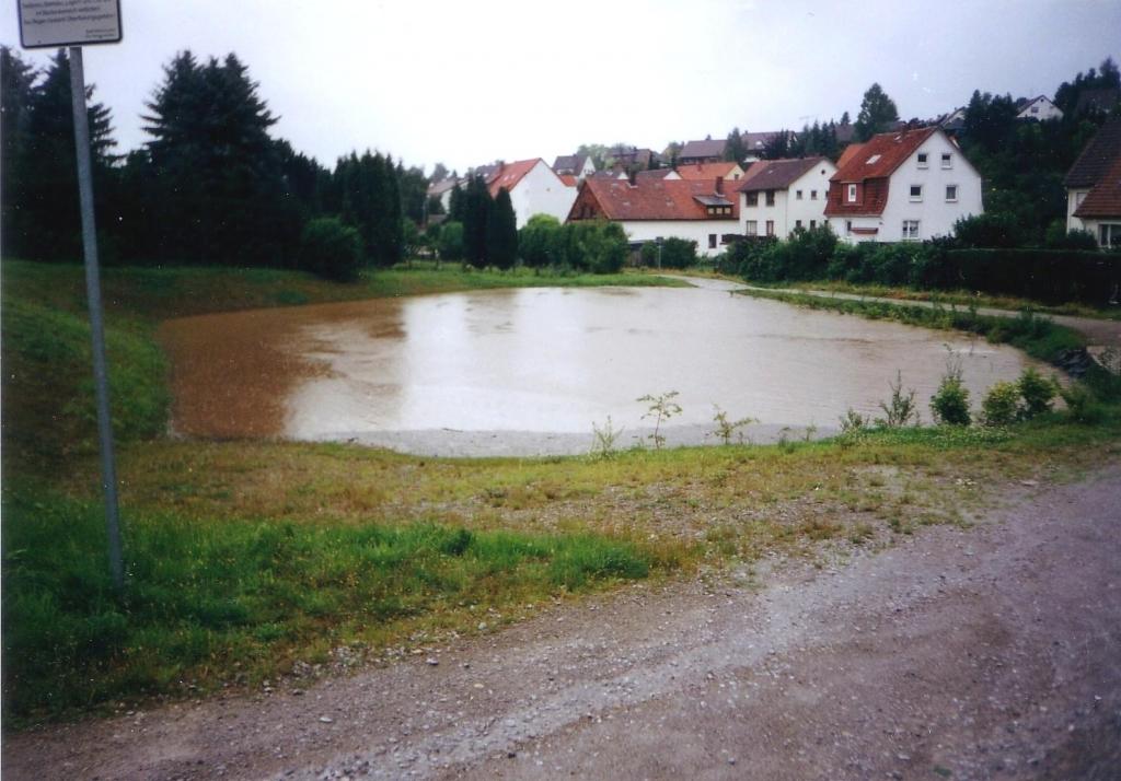 ImWambeck2002-01-Regenrückhaltebecken
