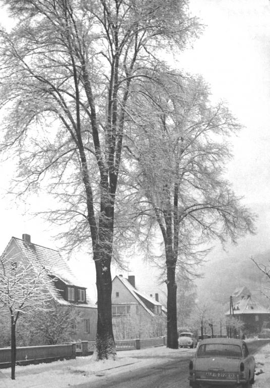 Kaiser-Wilhelm-Str1965-01-Winter