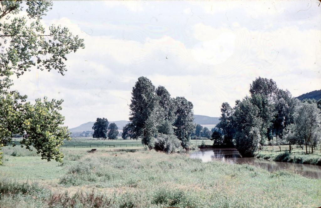Leine1960er-17