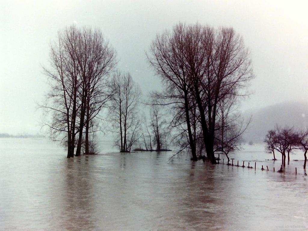 Leinehochwasser1990-04