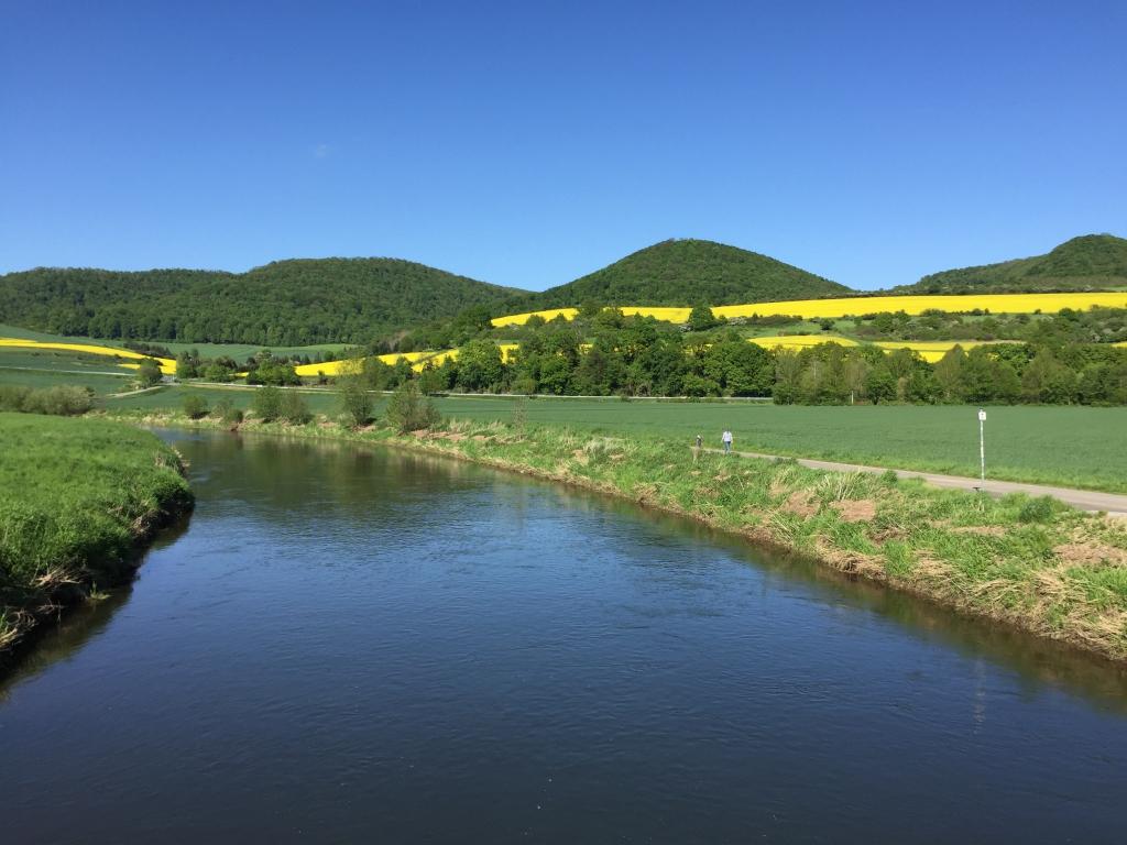 Leinewiesen2015-02-Leine