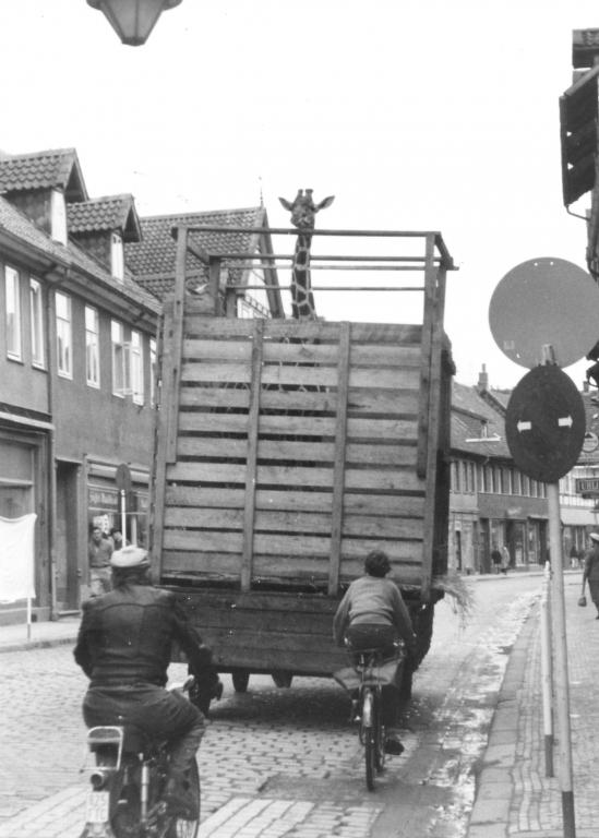 Leinstr1960-01