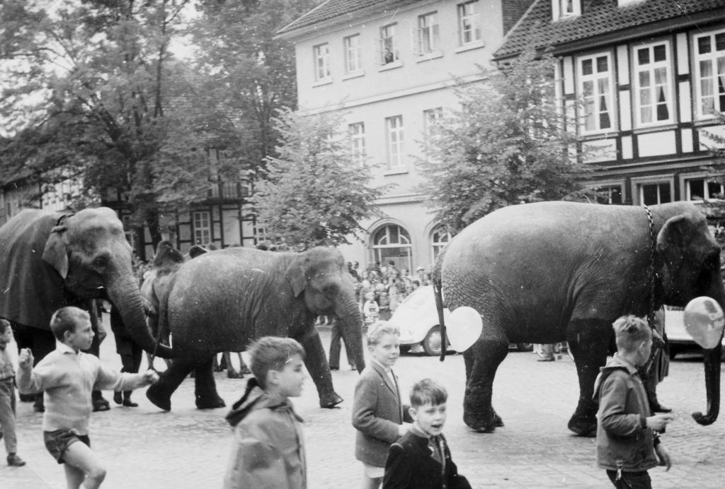 Marktplatz1961-04-CirkusFischer