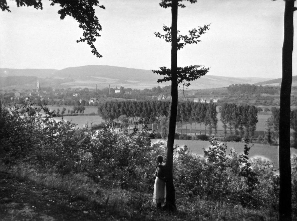 Panorama1893-07-06-01-vomSchlehberg
