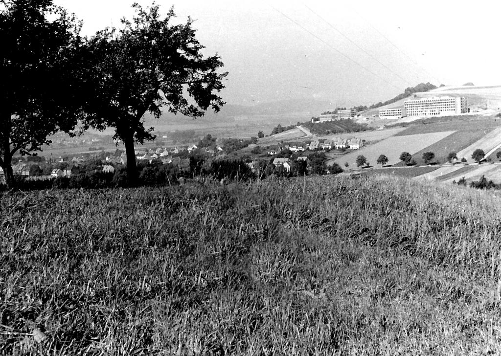 Panorama1962-02-vomKuckuck