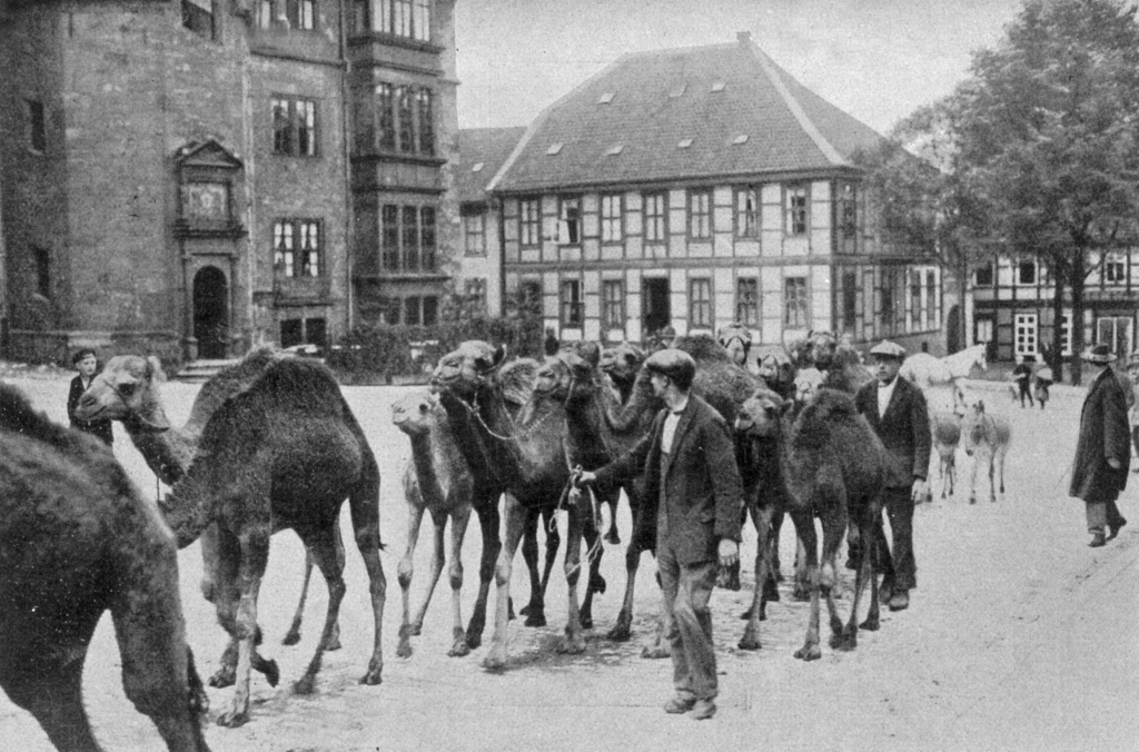 Ruhe1926-01-Hagenbeck