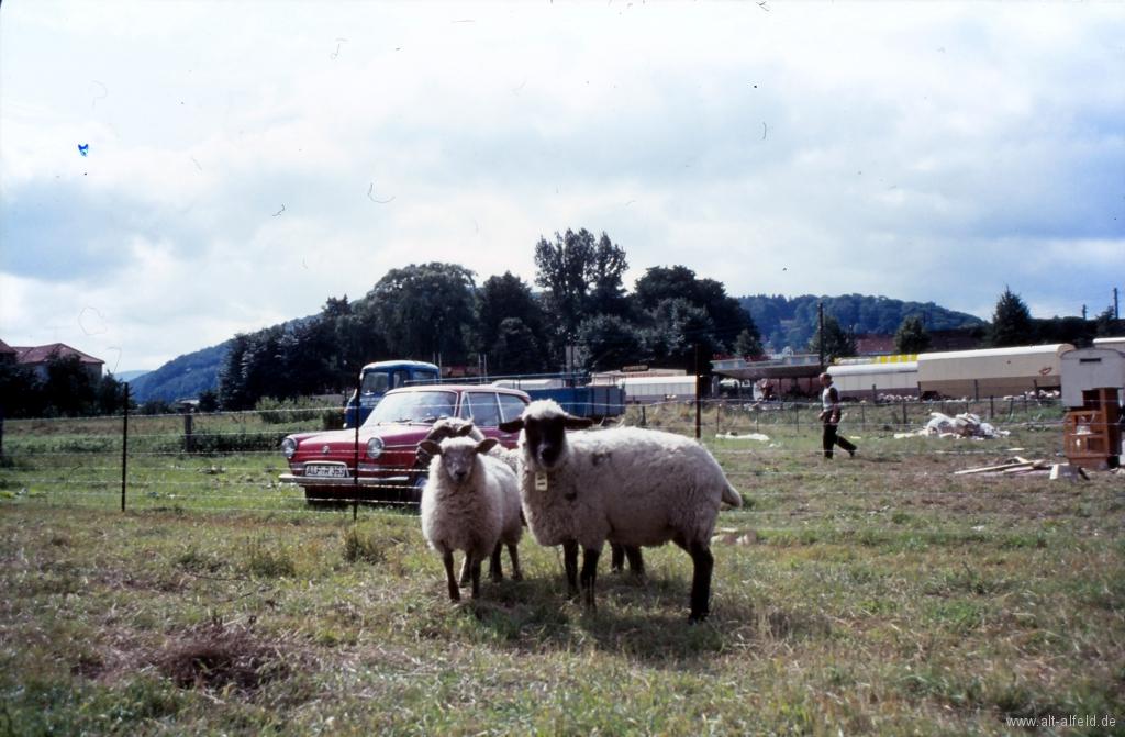 Schützenfest1969-101