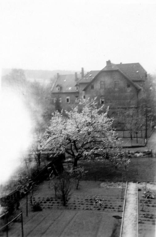 Steinbergstr1966-04-Abriss