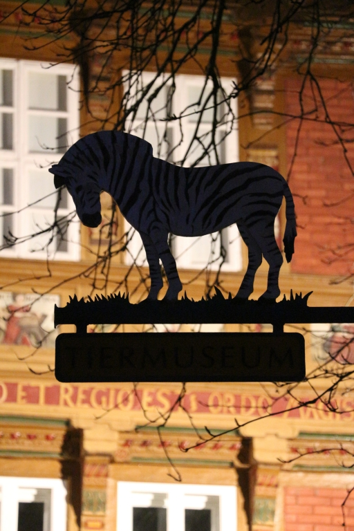 Tiermuseum2015-06-Nacht