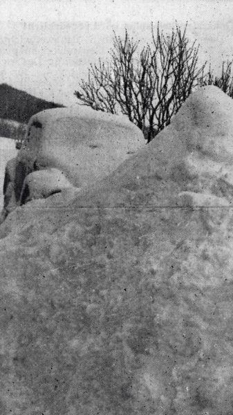 JANUAR: Das Jahr 1979 überraschte manchen Pkw-Besitzer auf ganz und gar nicht freudige Art und Weise. Ganze Schneeberge waren wegzuschaufeln