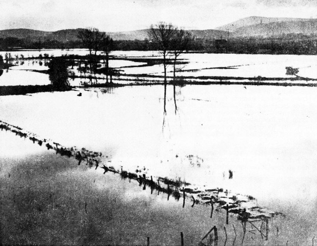 Chronik1981-01-Leinehochwasser